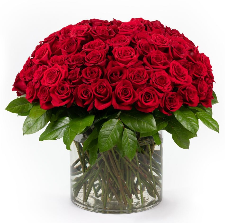 Simply WOW - 100 Red Roses