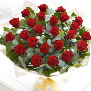 Two Dozen Lux Red Roses