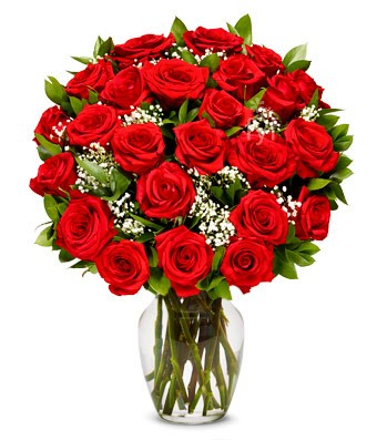 24 Red Roses in a Vase