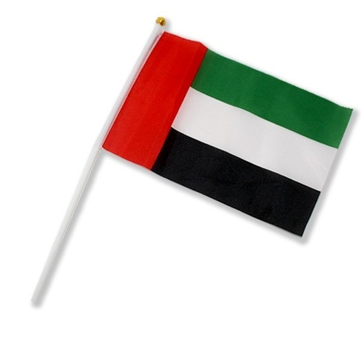 UAE Hand Flags x 60 pieces