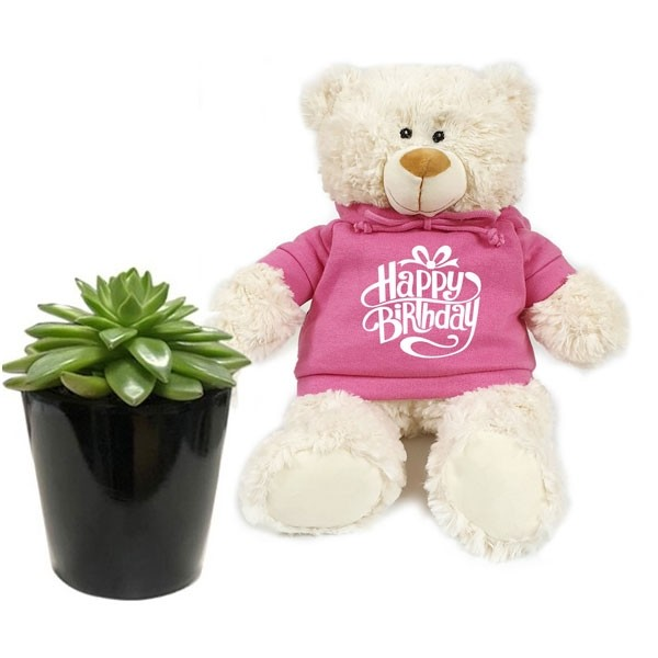 Happy Birthday Bear with Succulent Plant