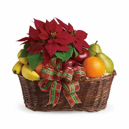 Pointsettia and Fruit Gift Basket